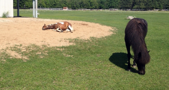 Gee, it is good to rest -- even though i was not on todays ride!