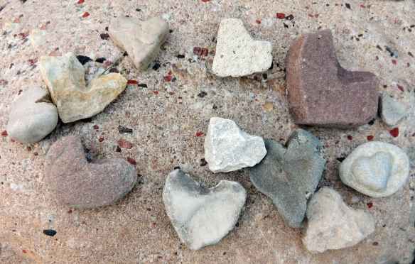My friends hobby - finding and artistically placing stone hearts - They were away a few weeks ago, I was watering her garden - took this photo - hope she does not mind me using it here