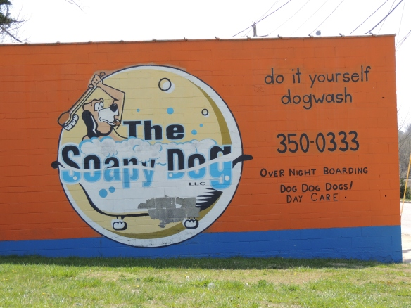 Clean dog - sort of like a car wash - do it your self here if you want to