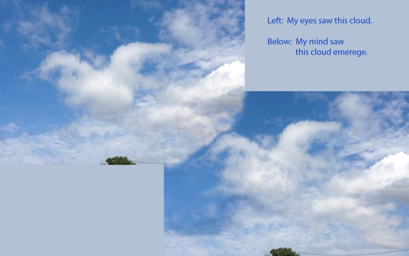 I ca't help myself -- I look at the clouds -- I have to vision an animal -- then I have to go to PhotoShop and try to reproduce what I see in my mind ...