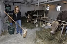Dad always had us sweeping -- then he would not say a word and re-do it right!