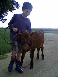 I was always caring for a 4H calf