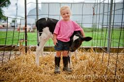 Looks like my sister -- not the calf - the young lady