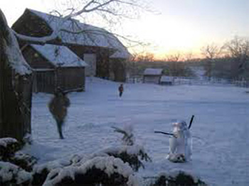 In the winter, we often  built snowmen after the milking was done
