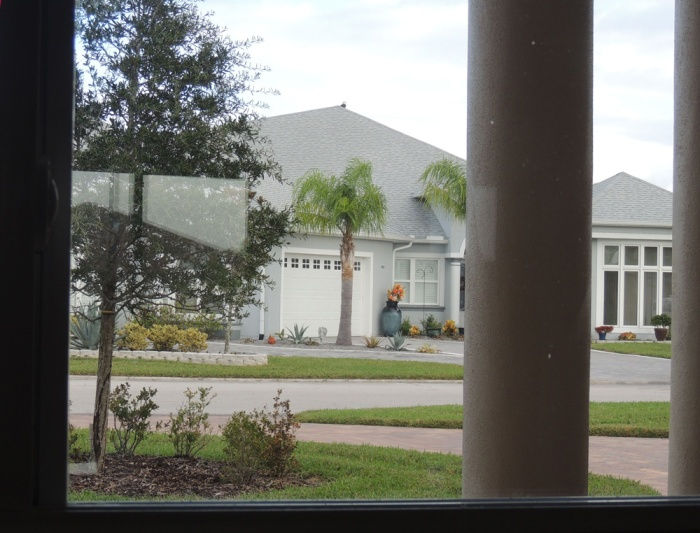 From our breakfast window - what is that spot on the neighbors roof?
