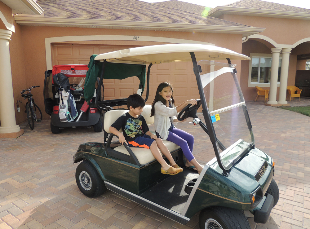 This is what happened 2 seconds after I suggested they take the cart and pick up the mail - I could picture me running down the road trying to catch a runaway Grandkids.  And she really is a good driver. Practiced not here but on the nature trail.