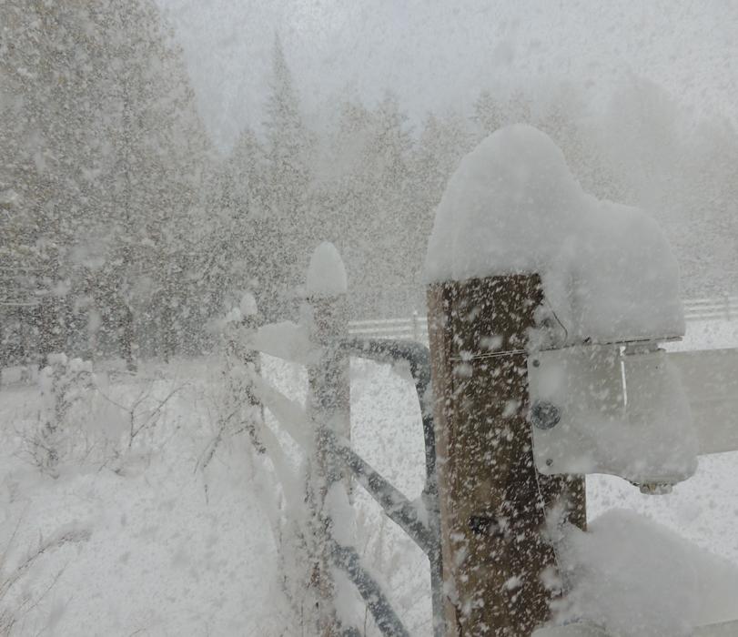 story snow