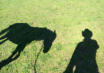 Living in the Shadow of a very famous Man and His Horse!