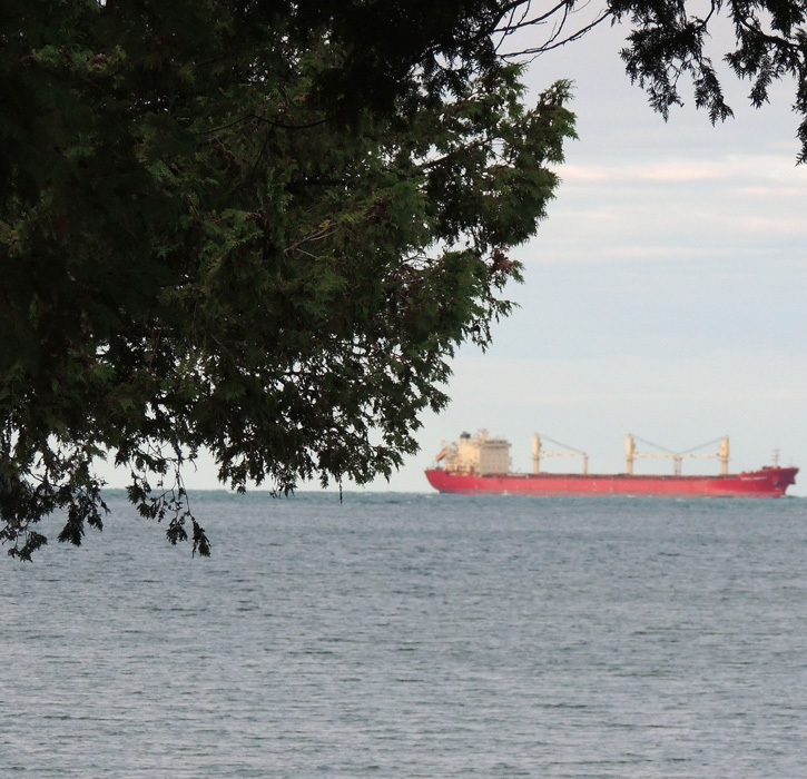 I know we are are there because I see a bright red freighter heading for the Soo Locks!