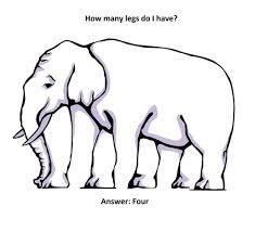 Count the legs - How many does your mind want the elephant to have? - One advantage a person with a crazy mind like mine has - I will never get called to be a witness to anything.